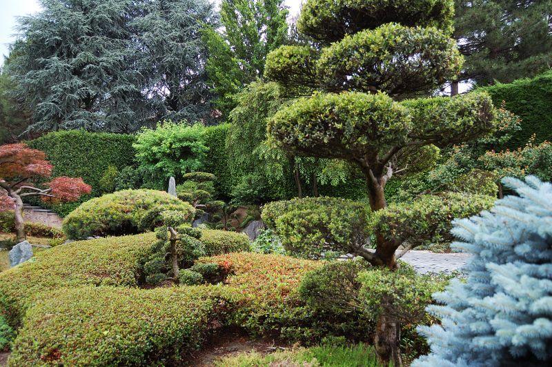 Glenmorangie 270507 - Giardini giapponesi ...